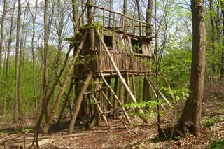 Cabane A Construire construire sa cabane : le must du bricolage pour enfants - mercredi